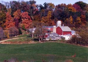 wisc farm