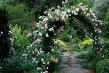 Garden-Arch-Ideas-With-Flowers